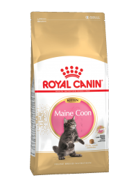 ROYAL CANIN Киттен мейн кун (Kitten maine coon).