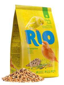 rio c.png